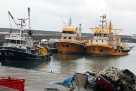 Doğu Karadeniz'de 107 Bin 186 Ton Hamsi Avlandı