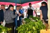 AK Parti Artvin'de Seçim Çalışmalarına Hız Verdi
